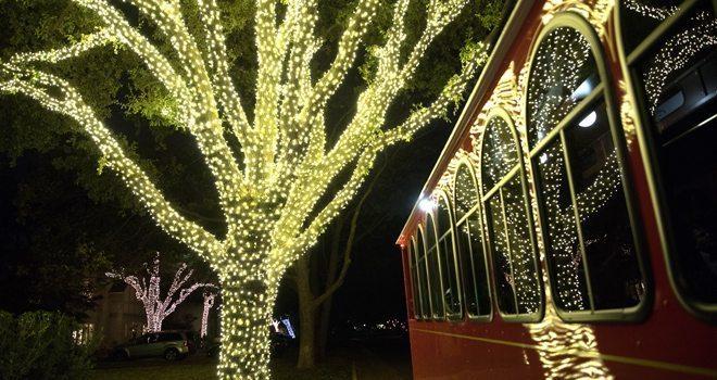 Christmas Light Tour Grand Prairie