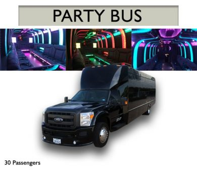 PARTY BUS I