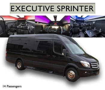 limo-fleet-sprinter-van